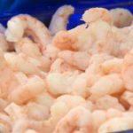 Le Québec via nos 5 sens - Les crevettes de Matane