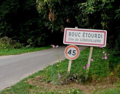 bouc-etourdi