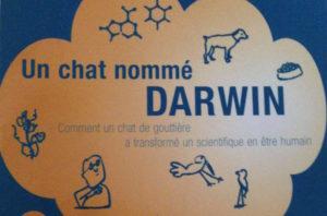 Un chat nommé Darwin 1
