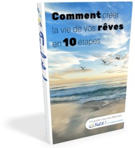eBOOK Vivre la vie de vos reves FEEL IT