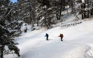 ski de fond au quebec